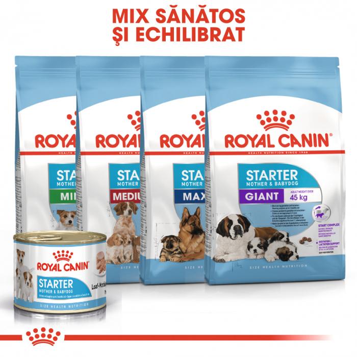 Royal Canin Starter, mama și puiul, conservă hrană umedă câini, (pate) 195 g [4]