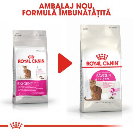 Royal Canin Exigent Savour Adult, hrană uscată pisici, apetit capricios 400 g [5]