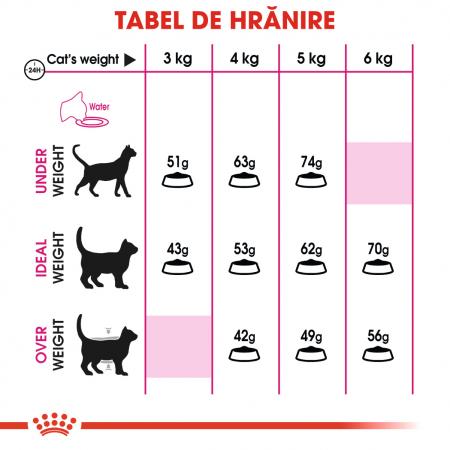 Royal Canin Exigent Savour Adult, hrană uscată pisici, apetit capricios 400 g [3]