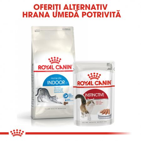 ROYAL CANIN INDOOR, hrană uscată pisici de interior, 4 kg [4]