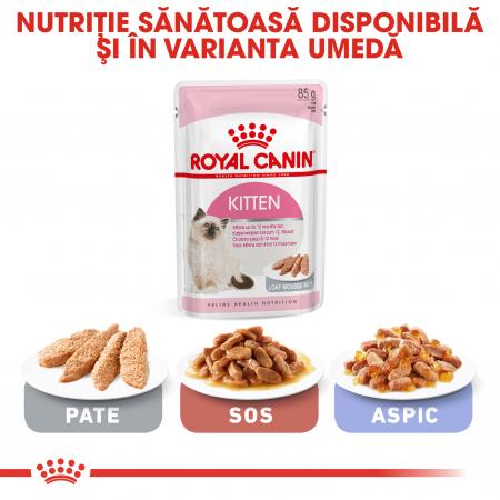 Royal Canin Kitten, hrană uscată pisici junior, 400 g [5]