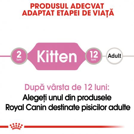 Royal Canin Kitten, bax hrană umedă pisici, (în sos), 12 x 85 g [1]