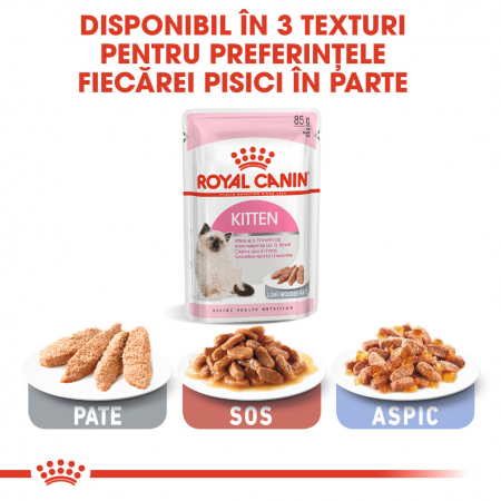 Royal Canin Kitten, bax hrană umeda pisici, (pate) 12 x 85 g [5]