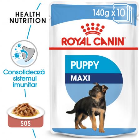 Royal Canin Maxi Puppy, bax hrană umedă câini junior, (în sos) 10 x 140 g [0]