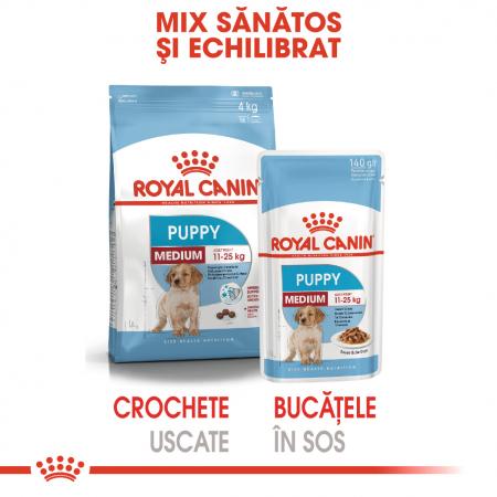 Royal Canin Medium Puppy, plic hrană umedă câini junior, (în sos),  10 x 140 g [4]