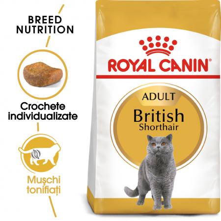 Royal Canin British Shorthair Adult, hrană uscată pisici, 2 kg [0]