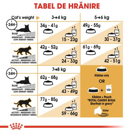Royal Canin British Shorthair Adult, hrană uscată pisici, 400 g [3]