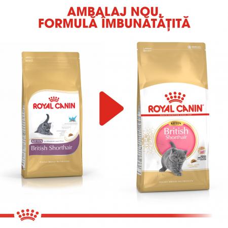 Royal Canin British Shorthair Kitten, hrană uscată pisici junior, 400 g [4]