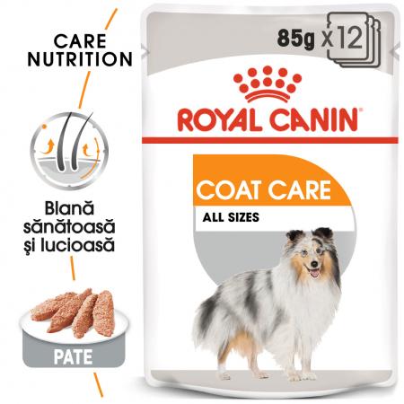 Royal Canin Coat Care Adult, plic hrană umedă câini, blană sănătoasă și lucioasă, (pate), 12X85G [0]