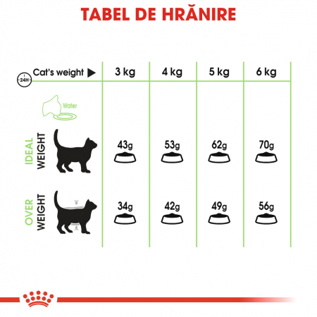 Royal Canin Digestive Care Adult, hrană uscată pisici, confort digestiv, 10 kg [4]