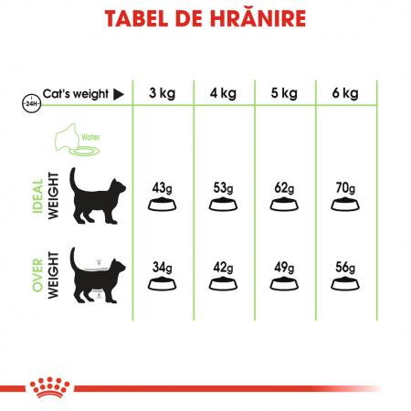 Royal Canin Digestive Care Adult, hrană uscată pisici, confort digestiv, 400 g [4]