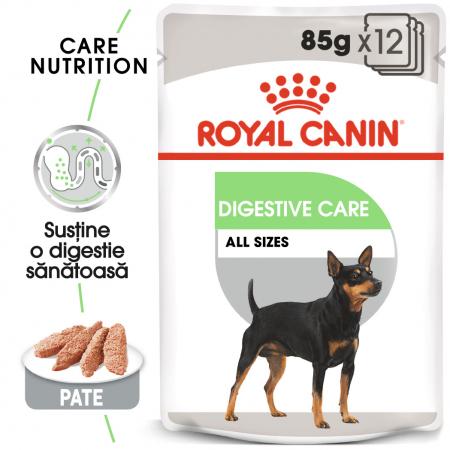 Royal Canin Digestive Care Adult, bax hrană umedă câini, confort digestiv, (pate), 12X85G [0]