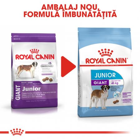 Royal Canin Giant Junior, hrană uscată câini junior, etapa 2 de creștere, 15 kg [4]