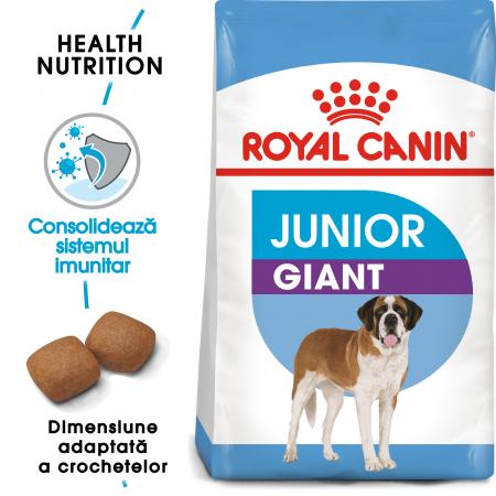 Royal Canin Giant Junior, hrană uscată câini junior, etapa 2 de creștere, 3.5 kg [0]