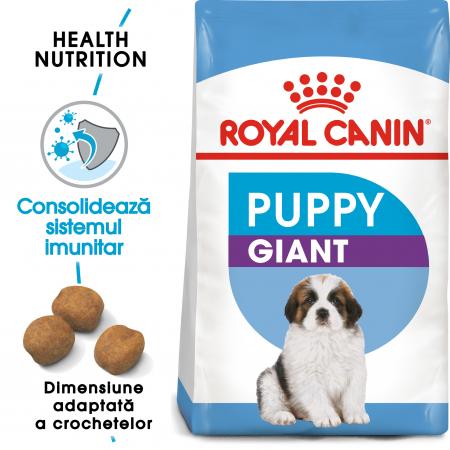 Royal Canin Giant Puppy, hrană uscată câini junior, etapa 1 de creștere , 15 kg [0]