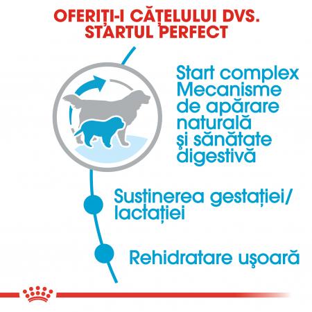 Royal Canin Giant Starter Mother & BabyDog, mama și puiul, hrană uscată câini,15 kg [3]