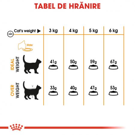 Royal Canin Hair & Skin Care Adult, hrană uscată pisici, piele și blană, 400 g [5]