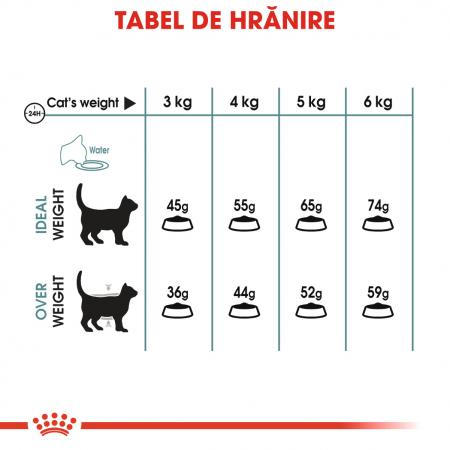 Royal Canin Hairball Care Adult, hrană uscată pisici, limitarea ghemurilor de blană 400 g [5]