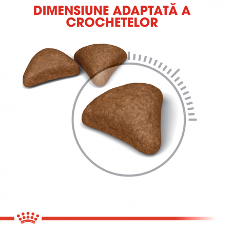 Royal Canin Hairball Care Adult, hrană uscată pisici, limitarea ghemurilor de blană 400 g [2]