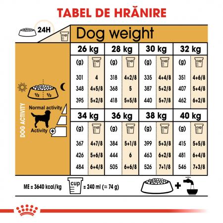 ROYAL CANIN LABRADOR ADULT 3 kg [4]