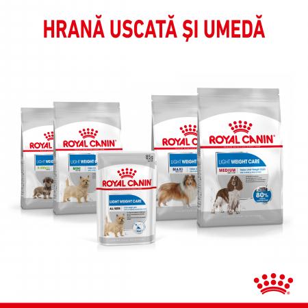 Royal Canin Light Weight Care Adult, bax hrană umedă câini, managementul greutății (pate), 12X85G [4]