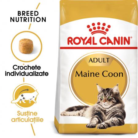 Royal Canin Maine Coon Adult, hrană uscată pisici, 4 kg [0]
