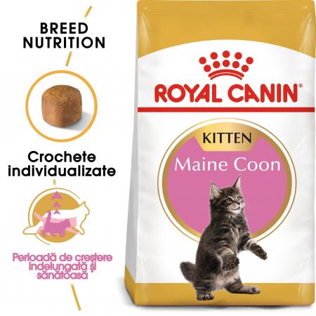 Royal Canin Maine Coon Kitten, hrană uscată pisici junior,  2 kg [0]