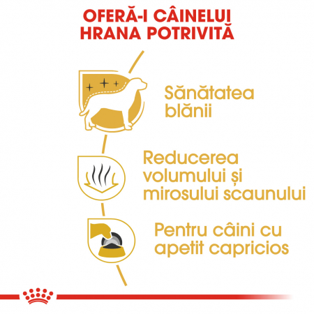 ROYAL CANIN MALTESE ADULT 1.5 kg [2]