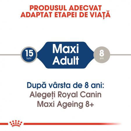Royal Canin Maxi Adult, bax hrană umedă câini, (în sos),10 x 140 g [1]