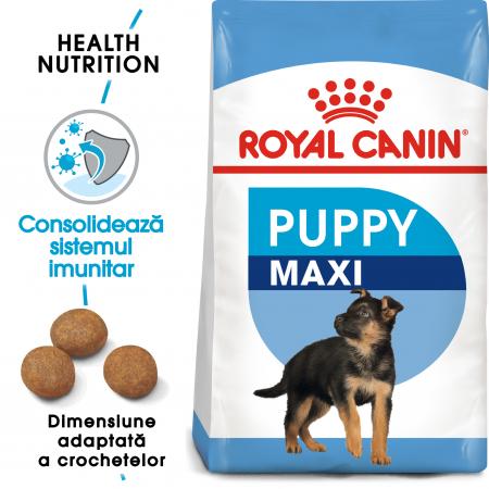 Royal Canin Maxi Puppy, hrană uscată câini junior, 1 kg [0]