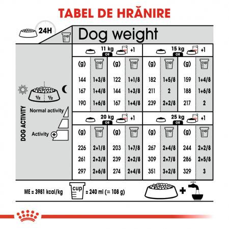 Royal Canin Medium Dermacomfort, hrană uscată câini, prevenirea iritațiilor pielii, 3KG [6]