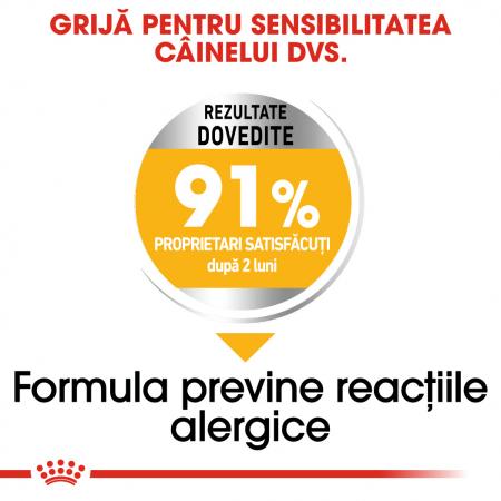 Royal Canin Medium Dermacomfort, hrană uscată câini, prevenirea iritațiilor pielii, 3KG [4]