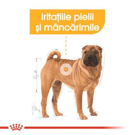 Royal Canin Medium Dermacomfort, hrană uscată câini, prevenirea iritațiilor pielii, 3KG [2]