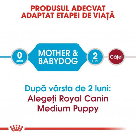 Royal Canin Medium Starter Mother & BabyDog, mama și puiul,  hrană uscată câini,4 kg [1]