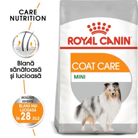 Royal Canin Mini Coat Care Adult, hrană uscată câini, blană sănătoasă și lucioasă, 3KG [0]