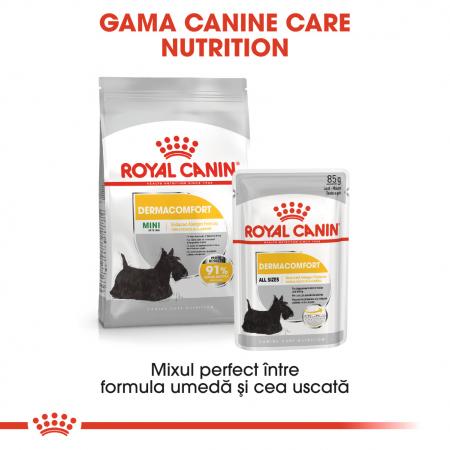 Royal Canin Mini Dermacomfort, hrană uscată câini, prevenirea iritațiilor pielii 1KG [5]