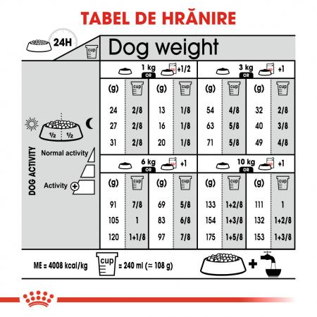 Royal Canin Mini Dermacomfort, hrană uscată câini, prevenirea iritațiilor pielii, 8KG [6]
