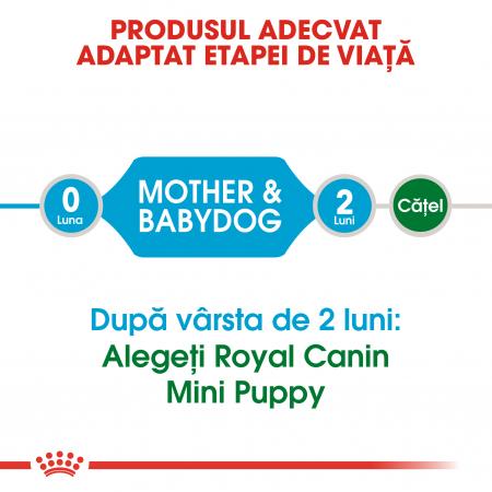 Royal Canin Mini Starter Mother & BabyDog, mama și puiul, hrană uscată câini 8.5 kg [1]