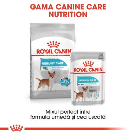 Royal Canin Mini Urinary Care, hrană uscată câini, sănătatea tractului urinar, 3KG [4]