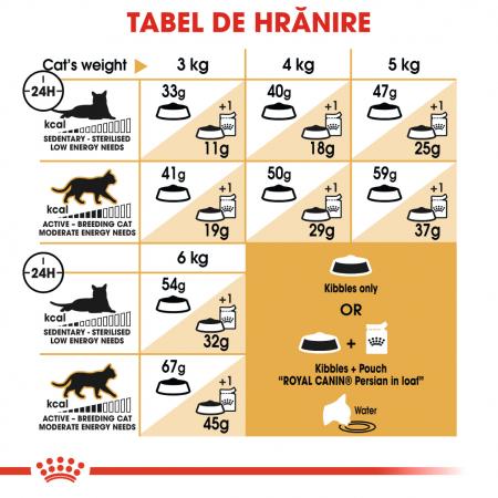 Royal Canin Persian Adult, hrană uscată pisici, 2 kg [4]