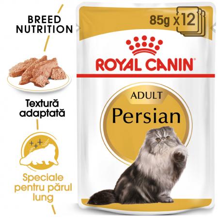 Royal Canin Persian Adult, plic hrană umedă pisici, (pate), 12 x 85 g [0]
