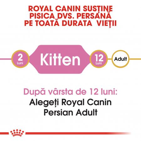 Royal Canin Persian Kitten, hrană uscată pisici junior, 2 kg [1]