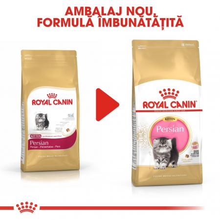 Royal Canin Persian Kitten, hrană uscată pisici junior, 400 g [4]