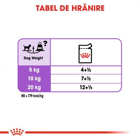 Royal Canin Sterilised Adult, bax hrană umedă câini sterilizați, (pate), 12X85G [5]