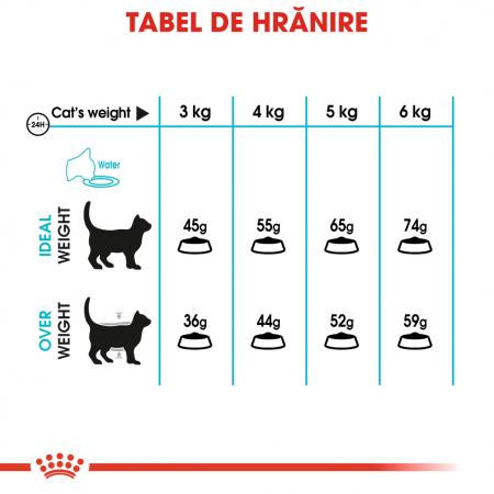 Royal Canin Urinary Care Adult, hrană uscată pisici, sănătatea tractului urinar, 400 g [5]