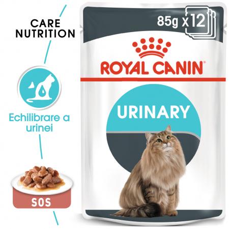 Royal Canin Urinary Care Adult, plic hrană umedă pisici, sănătatea tractului urinar, (în sos),12 x 85 g [0]