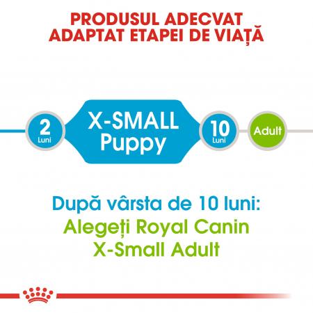 Royal Canin X-Small Puppy, hrană uscată câini junior, 500 g [1]