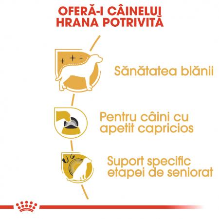 ROYAL CANIN YORKSHIRE ADULT 1.5 kg [2]