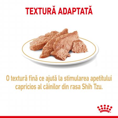 Royal Canin Shih Tzu Adult, plic hrană umedă câini, (pate),  12 x 85 g [2]