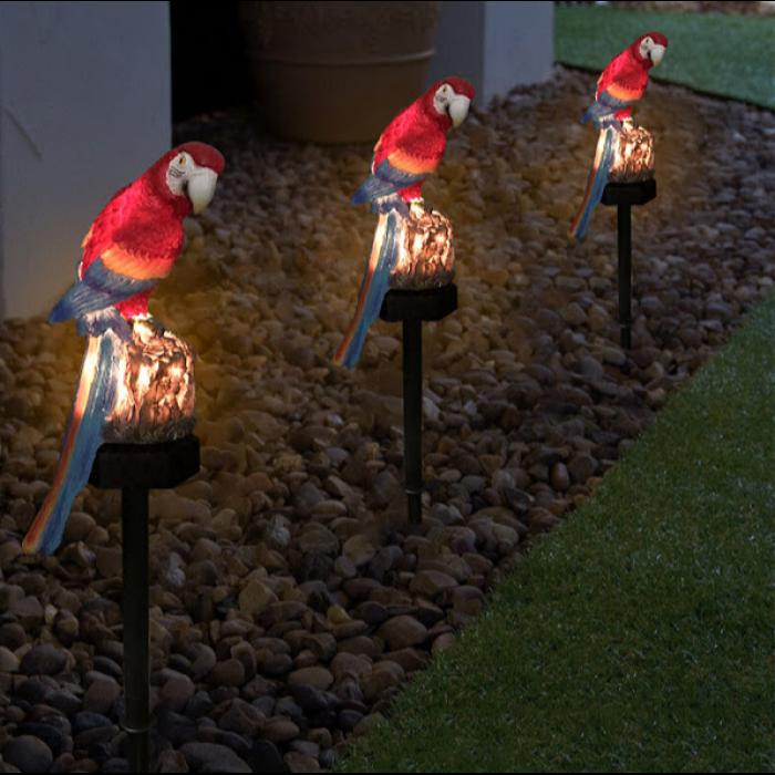 lampa papagal [2]